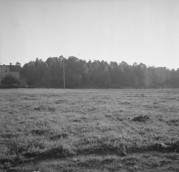 ESA_276-10.jpg