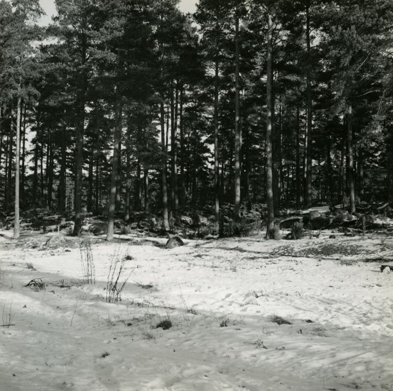 ESA_332-10.jpg