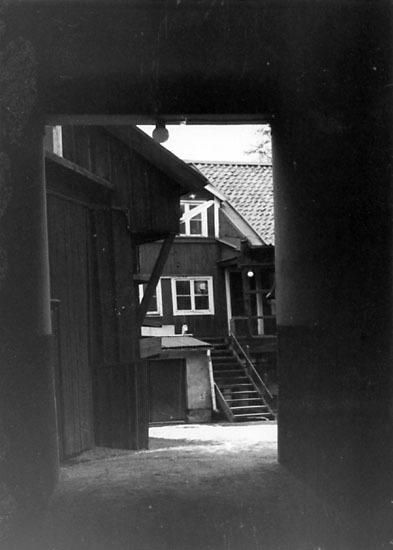 EM_1906.jpg