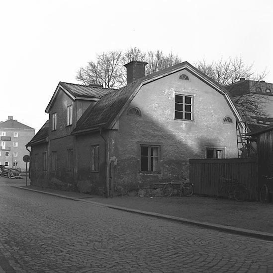 ESA_495-5.jpg