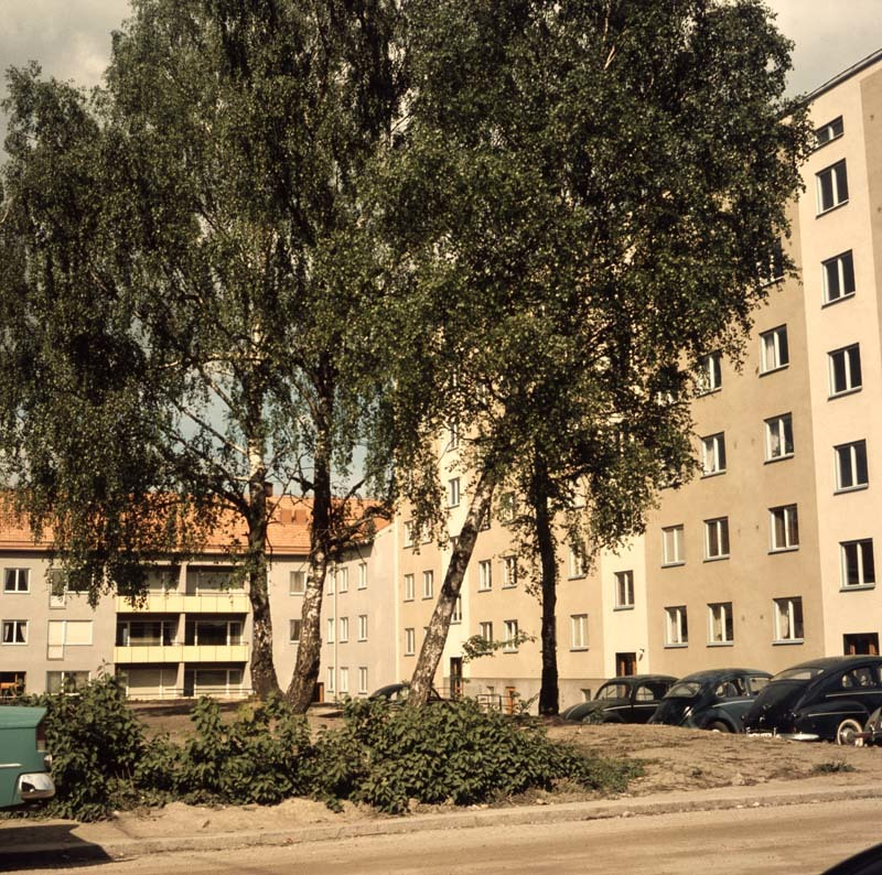 ESA_2090.jpg