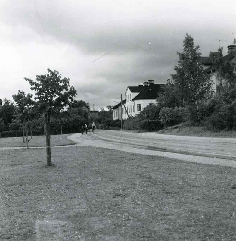 ESA_1094-7.jpg