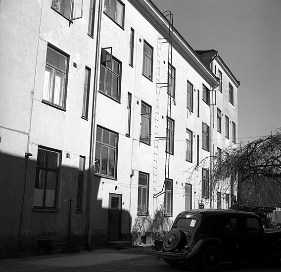 ESA_535-5.jpg