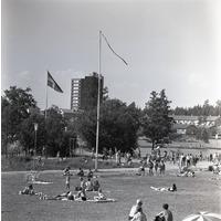 EM_TA1952.jpg